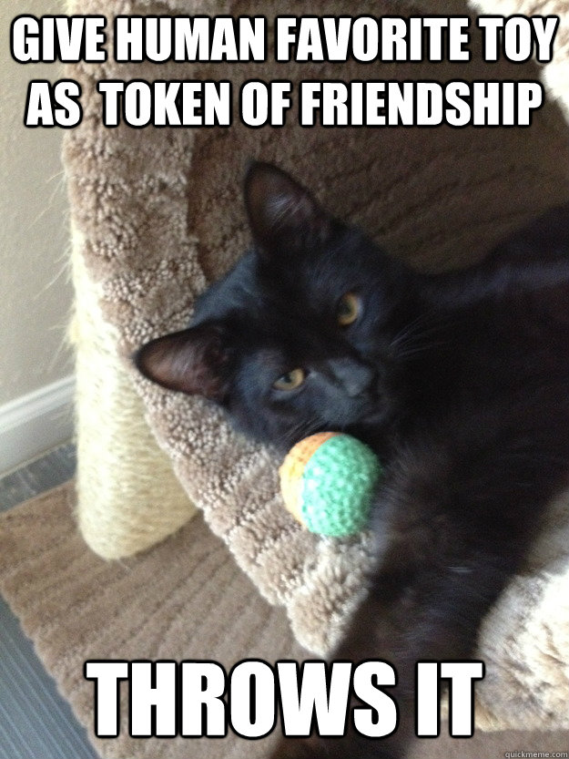 give human favorite toy as token of friendship throws it - 