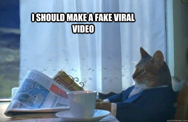 i should make a fake viral video  - Sophisticated Cat