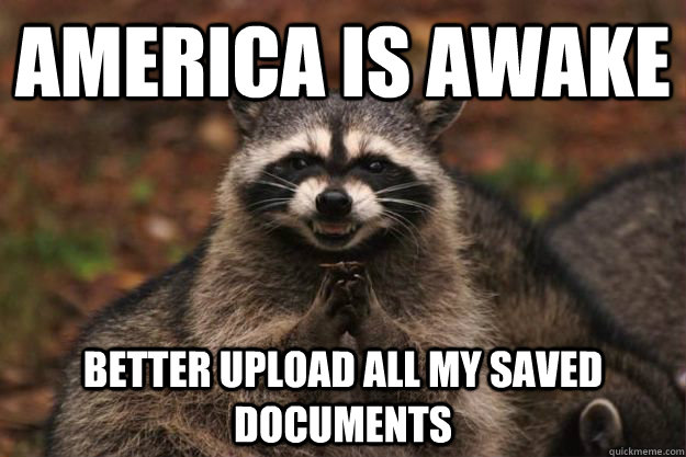 america is awake better upload all my saved documents - Evil Plotting Raccoon