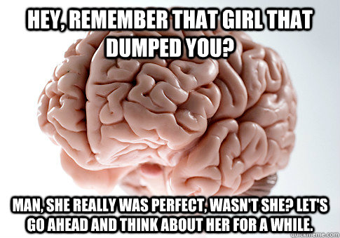 hey remember that girl that dumped you man she really wa - Scumbag Brain