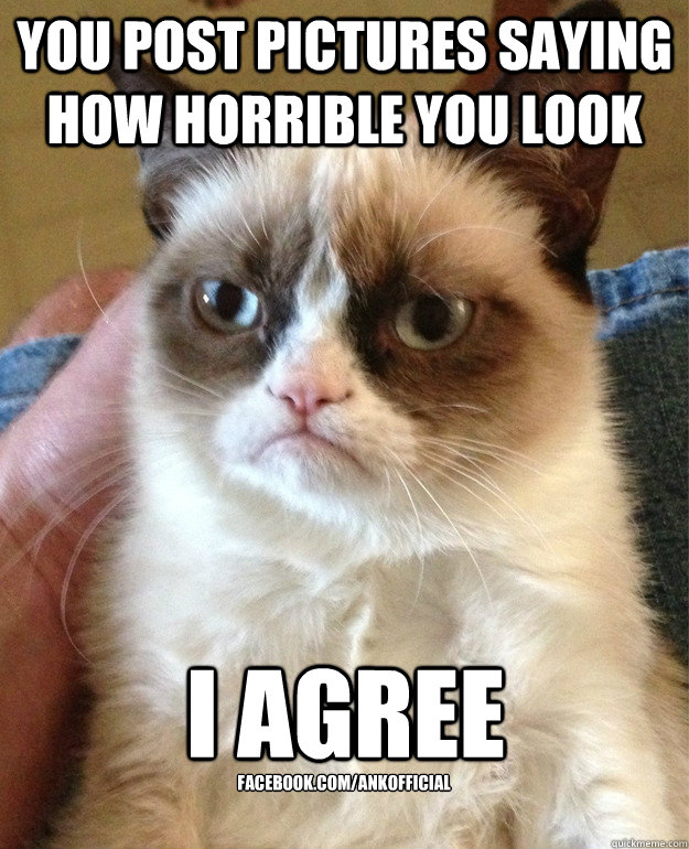 you post pictures saying how horrible you look i agree faceb - Grumpy Cat