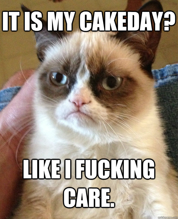 it is my cakeday like i fucking care - Grumpy Cat