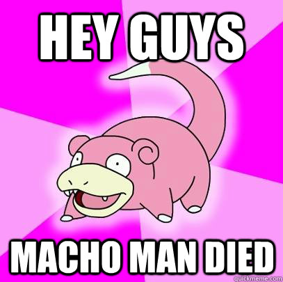 hey guys macho man died - Slowpoke