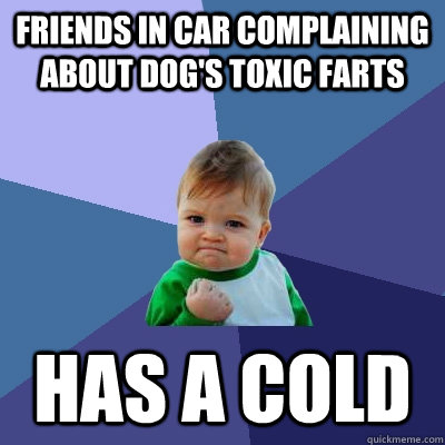 friends in car complaining about dogs toxic farts has a col - Success Kid