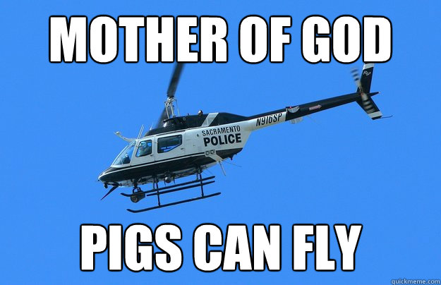 mother of god pigs can fly - When Pigs Fly