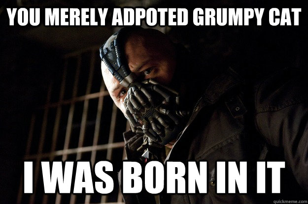 you merely adpoted grumpy cat i was born in it - Angry Bane