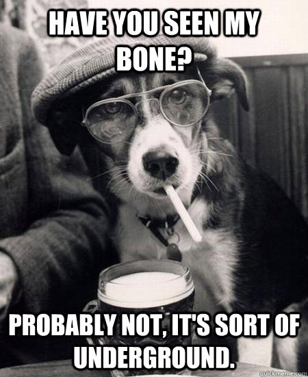 have you seen my bone probably not its sort of undergroun - Hipster Dog