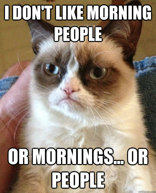 i dont like morning people or mornings or people - Grumpy Cat