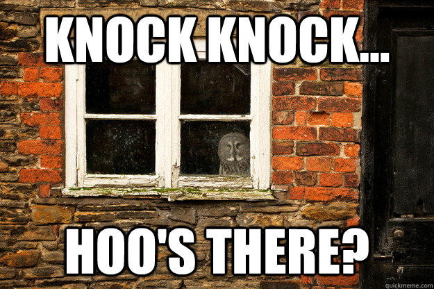 knock knock hoos there - 