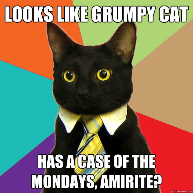 looks like grumpy cat has a case of the mondays amirite - Business Cat