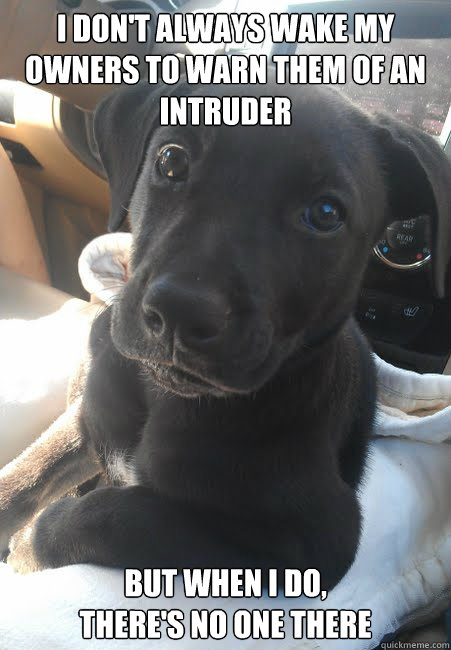 i dont always wake my owners to warn them of an intruder bu - The Most Interesting Dog In The World