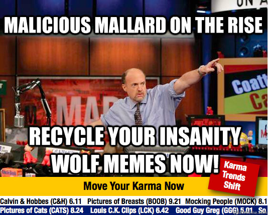 malicious mallard on the rise recycle your insanity wolf mem - Mad Karma with Jim Cramer