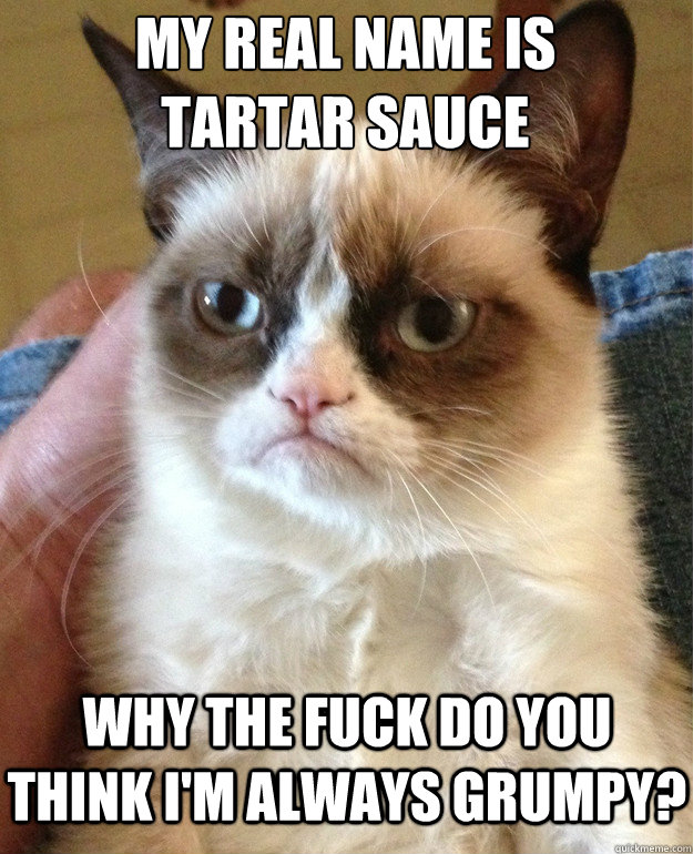 my real name is tartar sauce why the fuck do you think im a - Grumpy Cat