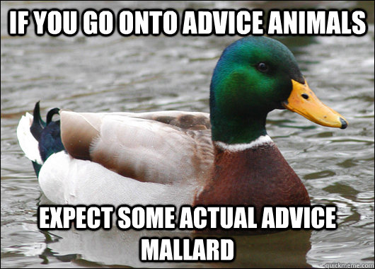 if you go onto advice animals expect some actual advice mall - Actual Advice Mallard