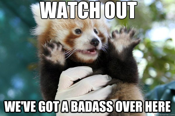 watch out weve got a badass over here - Red Panda