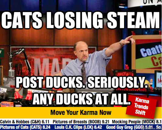 cats losing steam post ducks seriously any ducks at all - Mad Karma with Jim Cramer
