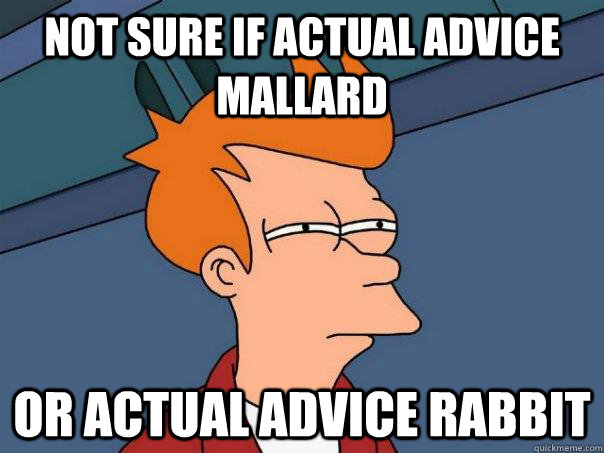 not sure if actual advice mallard or actual advice rabbit - Futurama Fry