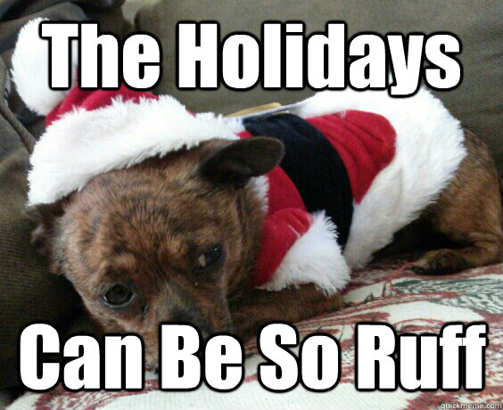the holidays can be so ruff - 