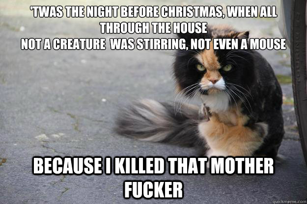 twas the night before christmas when all through the house - Angry Cat