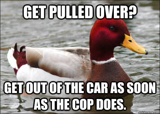 get pulled over get out of the car as soon as the cop does - Malicious Advice Mallard
