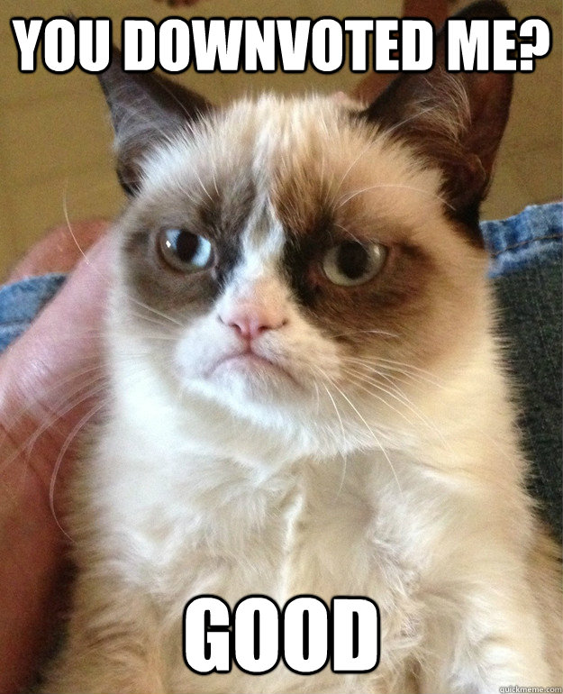 you downvoted me good  - Grumpy Cat
