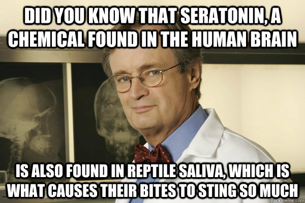did you know that seratonin a chemical found in the human b - Fun Fact Advice Mallard