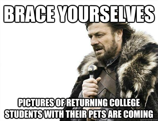 brace yourselves pictures of returning college students with - Brace yourselves