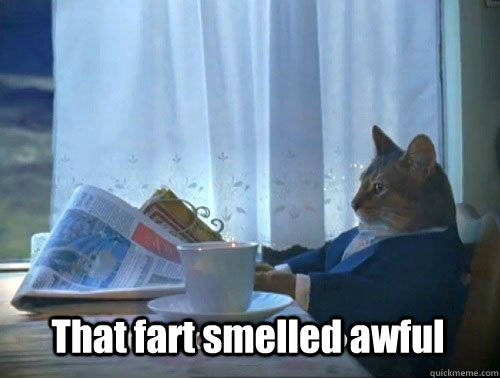 that fart smelled awful - Fancy Cat