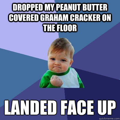 dropped my peanut butter covered graham cracker on the floor - Success Kid