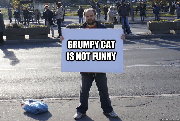 grumpy cat is not funny - Grumpy Serb
