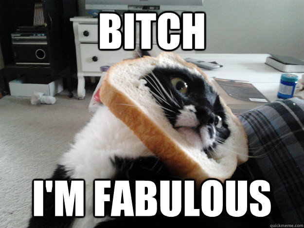 bitch im fabulous - Breaded Cat