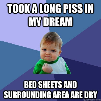 took a long piss in my dream bed sheets and surrounding area - Success Kid