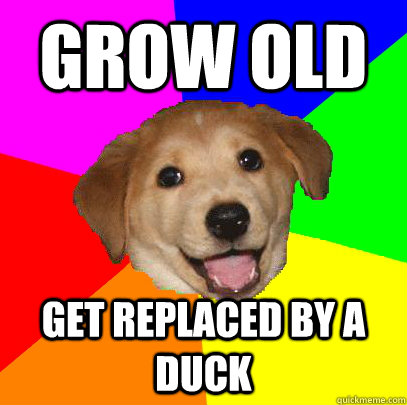 grow old get replaced by a duck - Advice Dog