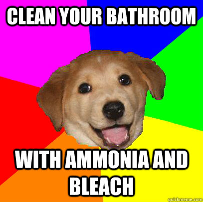 clean your bathroom with ammonia and bleach - Advice Dog