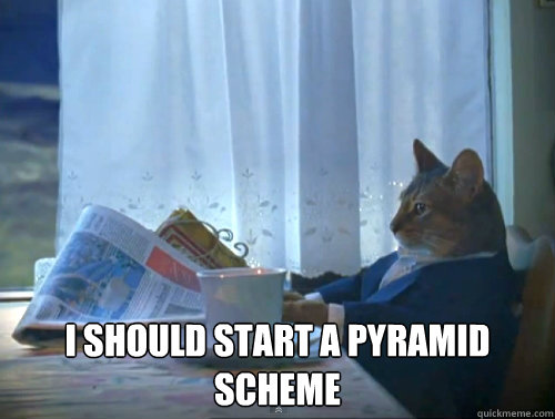 i should start a pyramid scheme - The One Percent Cat