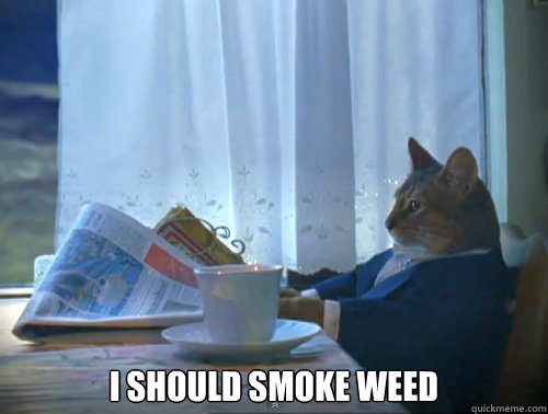i should smoke weed - The One Percent Cat
