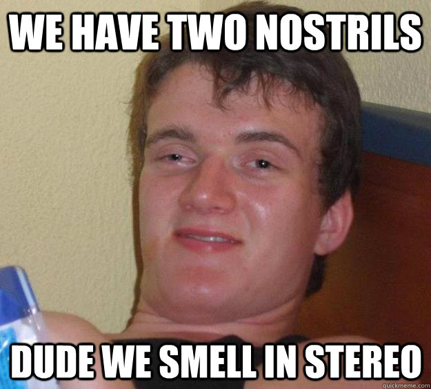 we have two nostrils dude we smell in stereo - 10 Guy