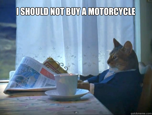 i should not buy a motorcycle  - The One Percent Cat