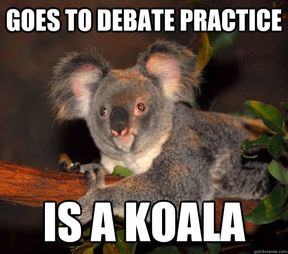 goes to debate practice is a koala -