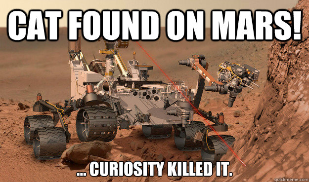 cat found on mars curiosity killed it - Unimpressed Curiosity