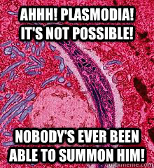 ahhh plasmodia its not possible nobodys ever been able - First thought in my head when my biology teacher said Plasmodia.