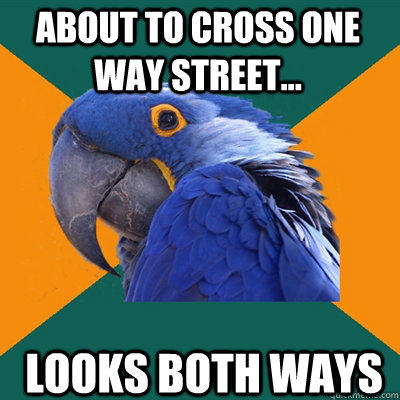 about to cross one way street looks both ways - Paranoid Parrot