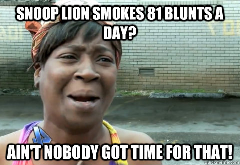 snoop lion smokes 81 blunts a day aint nobody got time for - aint nobody got time