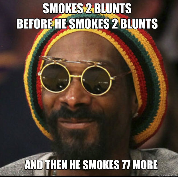 smokes 2 blunts before he smokes 2 blunts and then he smoke - snoop lion