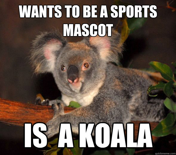 wants to be a sports mascot is a koala - 