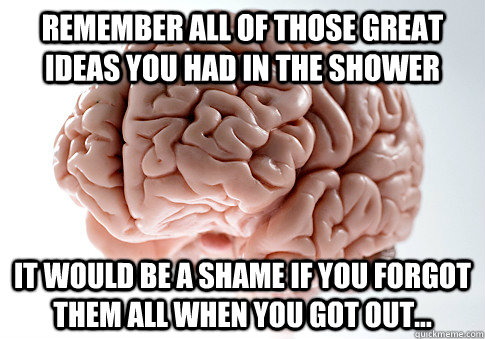 remember all of those great ideas you had in the shower it w - Scumbag Brain