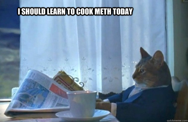 i should learn to cook meth today - Sophisticated Cat