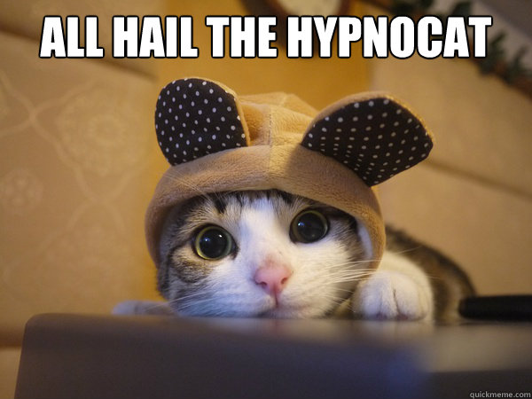 all hail the hypnocat -