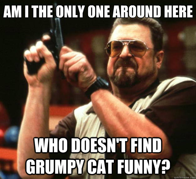 am i the only one around here who doesnt find grumpy cat fu - Big Lebowski