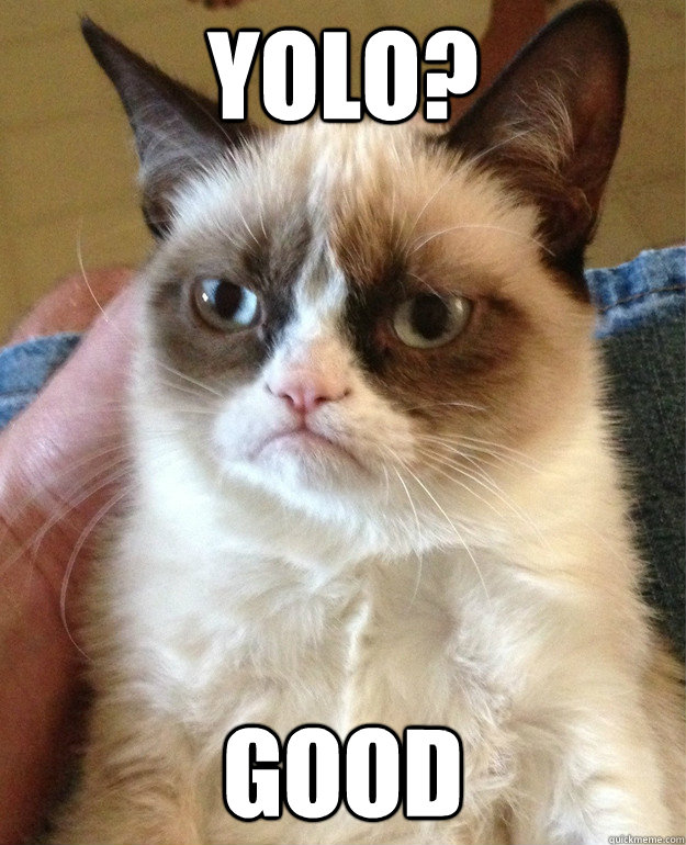 yolo good - Grumpy Cat